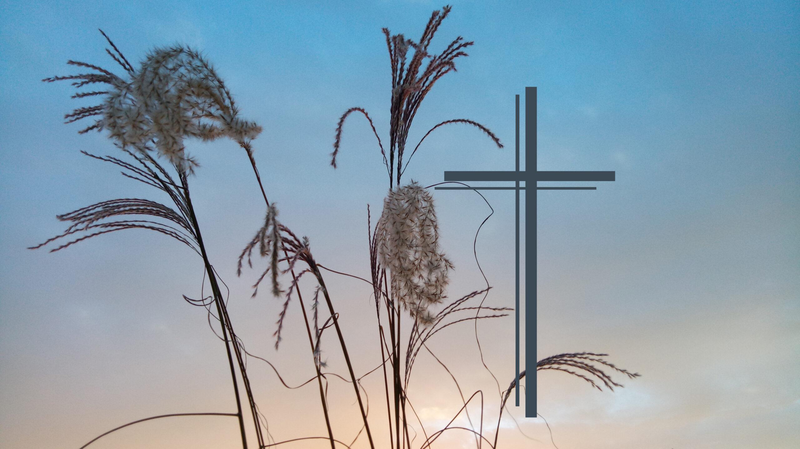 Ev. Kirche: Ewigkeitssonntag 22.11.2020